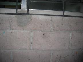 Maria Madre de los Pobres 2005 055